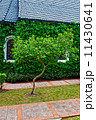 small chapel with green trees 11430641