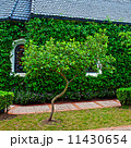 small chapel with green trees 11430654