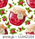 キイチゴ ラスベリー ラズベリーのイラスト 11442104