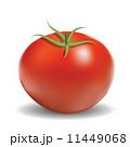 トマト ベジタブル 野菜のイラスト 11449068