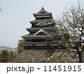 松本城 (長野県) 11451915
