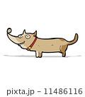 マンガ わんこ 犬のイラスト 11486116