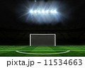 Football pitch under spotlights 11534663