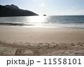 ランカウイ島のビーチ 11558101