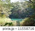 五色沼(福島県) 11558716
