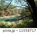 五色沼(福島県) 11558717