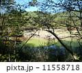 五色沼(福島県) 11558718