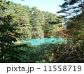 五色沼(福島県) 11558719