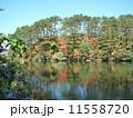 五色沼(福島県) 11558720