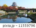 秋の墨俣城 城 天守閣の写真 11559796