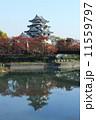 秋の墨俣城 城 紅葉の写真 11559797