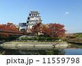 秋の墨俣城 紅葉 城の写真 11559798