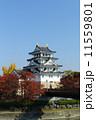 秋の墨俣城 紅葉 城の写真 11559801