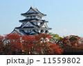 秋の墨俣城 紅葉 城の写真 11559802