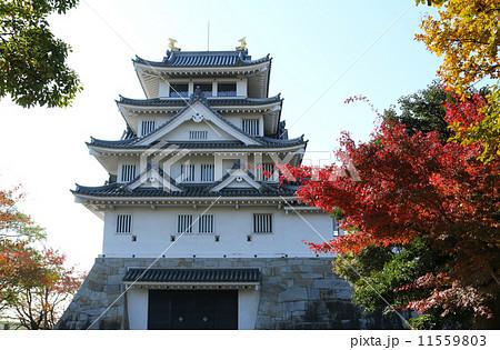 秋の墨俣城 11559803