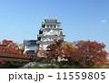 秋の墨俣城 紅葉 城の写真 11559805