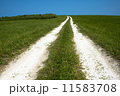 白い道 11583708