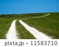 白い道 11583710