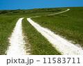 白い道 11583711