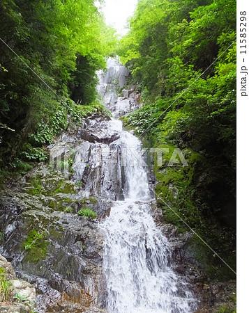 常清滝(広島県) 11585298