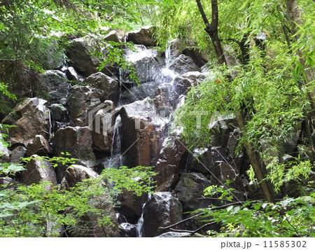 常清滝(広島県) 11585302