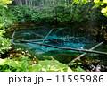 神の子池 北海道清里町 11595986