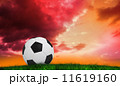 Composite image of black and white football 11619160