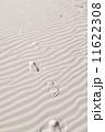 footprint 11622308