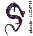 辰 龍 竜のイラスト 11626746
