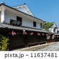 柳井市 金魚ちょうちん 白壁の町の写真 11637481
