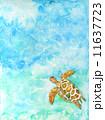 ウミガメ 海 亀 カメ 泳ぐ 爬虫類 動物 沖縄 ハワイ バリ島 リゾート 癒し ゆっくり 海中 エコツーリズム 旅行 南国 海の生物 ダイビング シュノーケル 屋久島 青 水 野生 ケラマ諸島 慶良 11637723