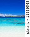 阿嘉島 沖縄 海の写真 11639548
