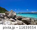 慶良間諸島 海 沖縄の写真 11639554