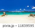 沖縄 海 阿嘉島の写真 11639595