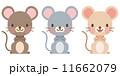 動物 ねずみ セット 11662079
