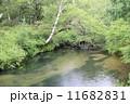 清流 湯川 川の写真 11682831