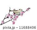 梅の花 鶯 鳥のイラスト 11688406