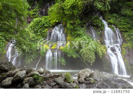 吐竜の滝 11691750