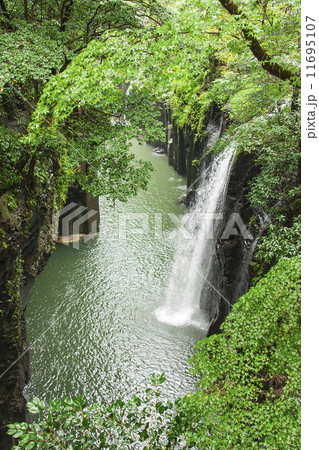 滝 11695107