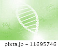 らせん 螺旋 遺伝子のイラスト 11695746