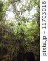 森林 11703016