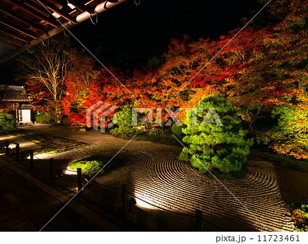 南禅寺・天授庵の庭ライトアップ 11723461