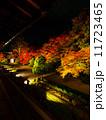 南禅寺・天授庵の庭ライトアップ 11723465