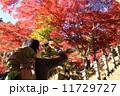 登山者 男性 紅葉の写真 11729727