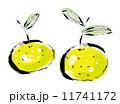柚子 11741172