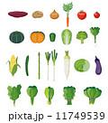 野菜セット【食材・シリーズ】 11749539