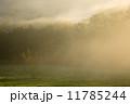 朝日 朝霧 幻想的の写真 11785244