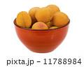 アプリコット アンズ 杏の写真 11788984