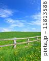 雲 草原 柵の写真 11813586