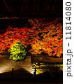 南禅寺・天授庵の紅葉ライトアップ 11814080